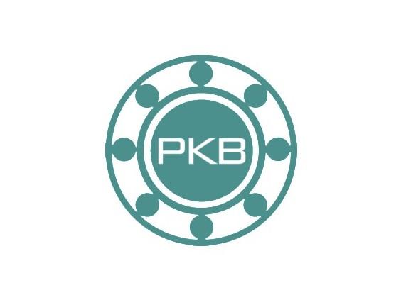 PKB轴承,Pacamor轴承,Thinex轴承,硬盘用轴承,电脑硬盘轴承,机械硬盘轴承,硬盘磁头轴承