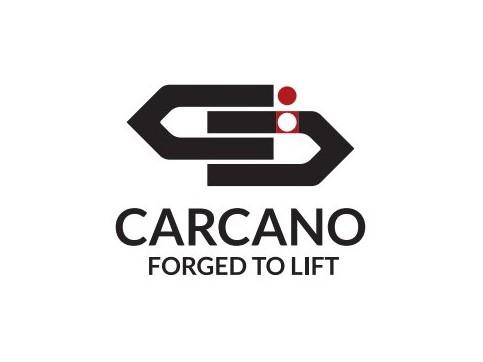 代理销售意大利Carcano吊环,Carcano花篮,Carcano吊索,Carcano吊索,Carcano有眼螺钉,Cartec吊环